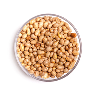 Soy Nuts Roasted/Salted
